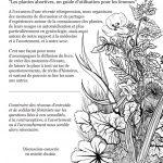 Forcalquier 19-20 janvier: rencontre autour des plantes en gynécologie